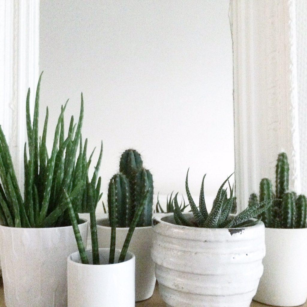 mit Pflanzen dekorieren