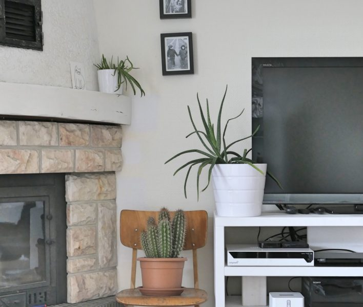 before and after urban jungle decorating living-room